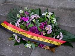 commemoration 11 11 20 (8)