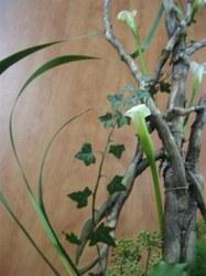 Art floral - 16