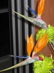 Art floral - 48