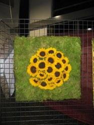 Art floral - 72