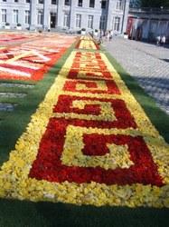 fleurs02